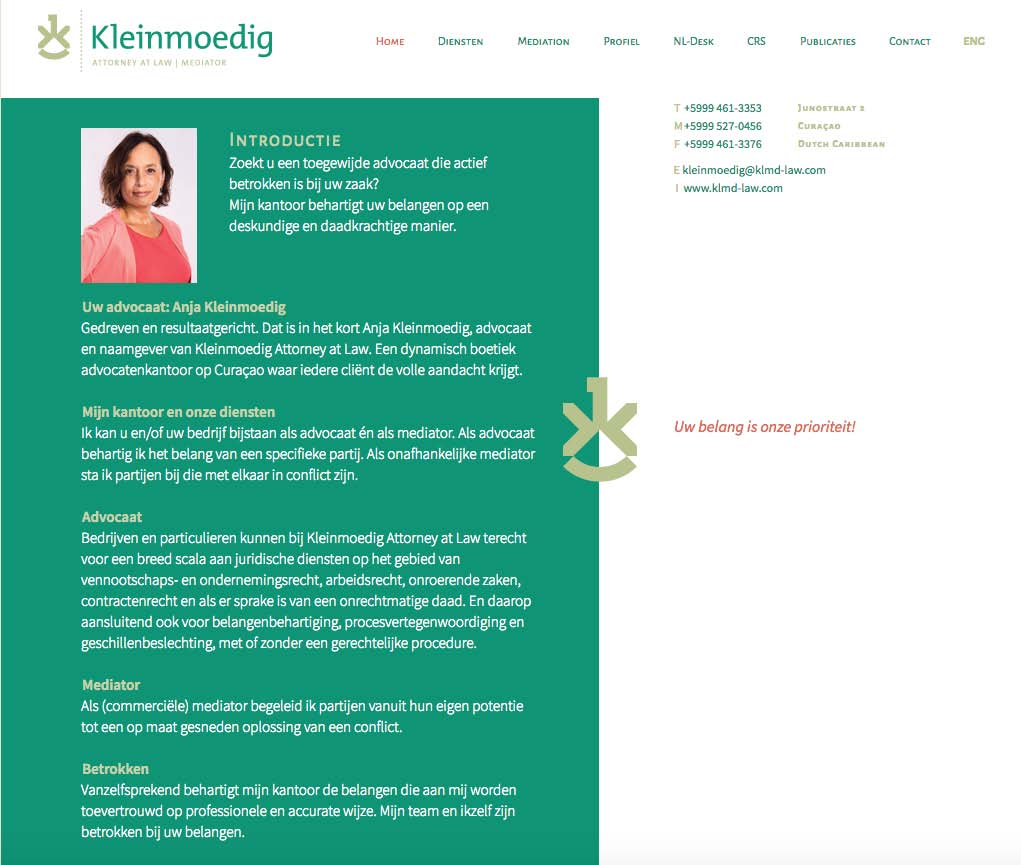 Website Kleinmoedig Attorney at Law - tekst
